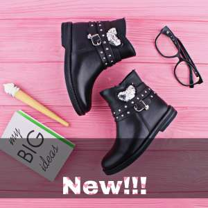New Collection Back to School